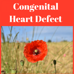 Types of congenital heart defects. Congenital heart defect symptoms. Congenital heart defect causes.