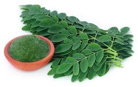 Moringa health benefits
