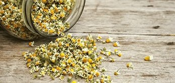 What is chamomile tea good for?