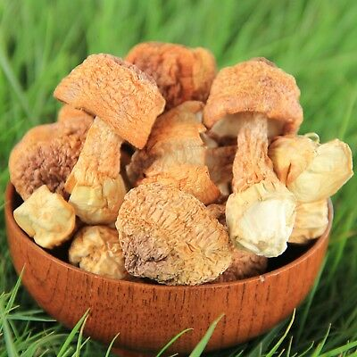 What is agaricus blazei good for?What is agaricus blazei mushroom?